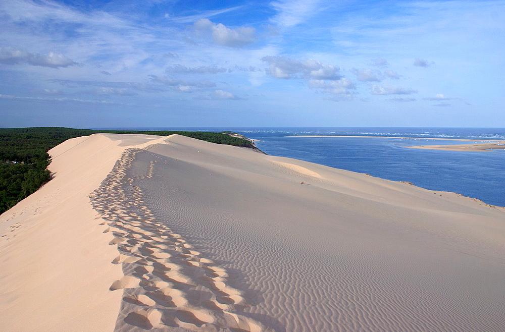La Grande Dune du Pilat, Dune du Pyla, Arcachon, the Atlantic, France, Europe.