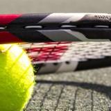 tennis mestre